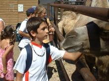 Balatoni tábor 2007
