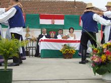 Falunap 2008