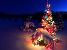 Karácsony 2013